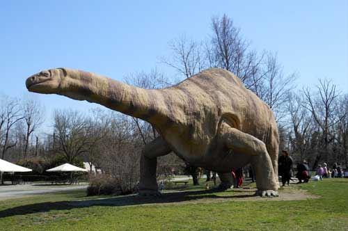 Parco-Paleontologico-dei-dinosauri