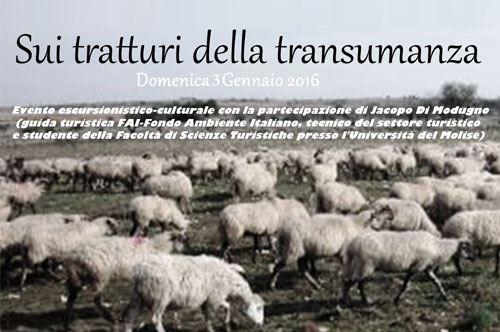 sui-tratturi-della-transumanza