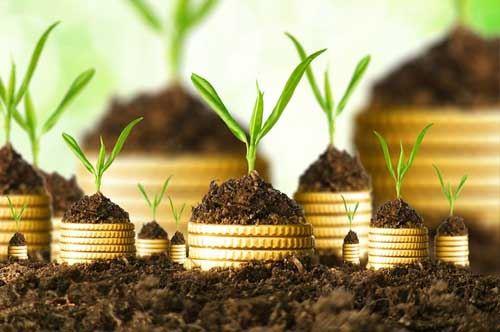 green-economy-puglia